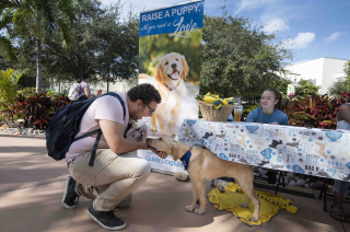 a student petting a puppy raiser dog
