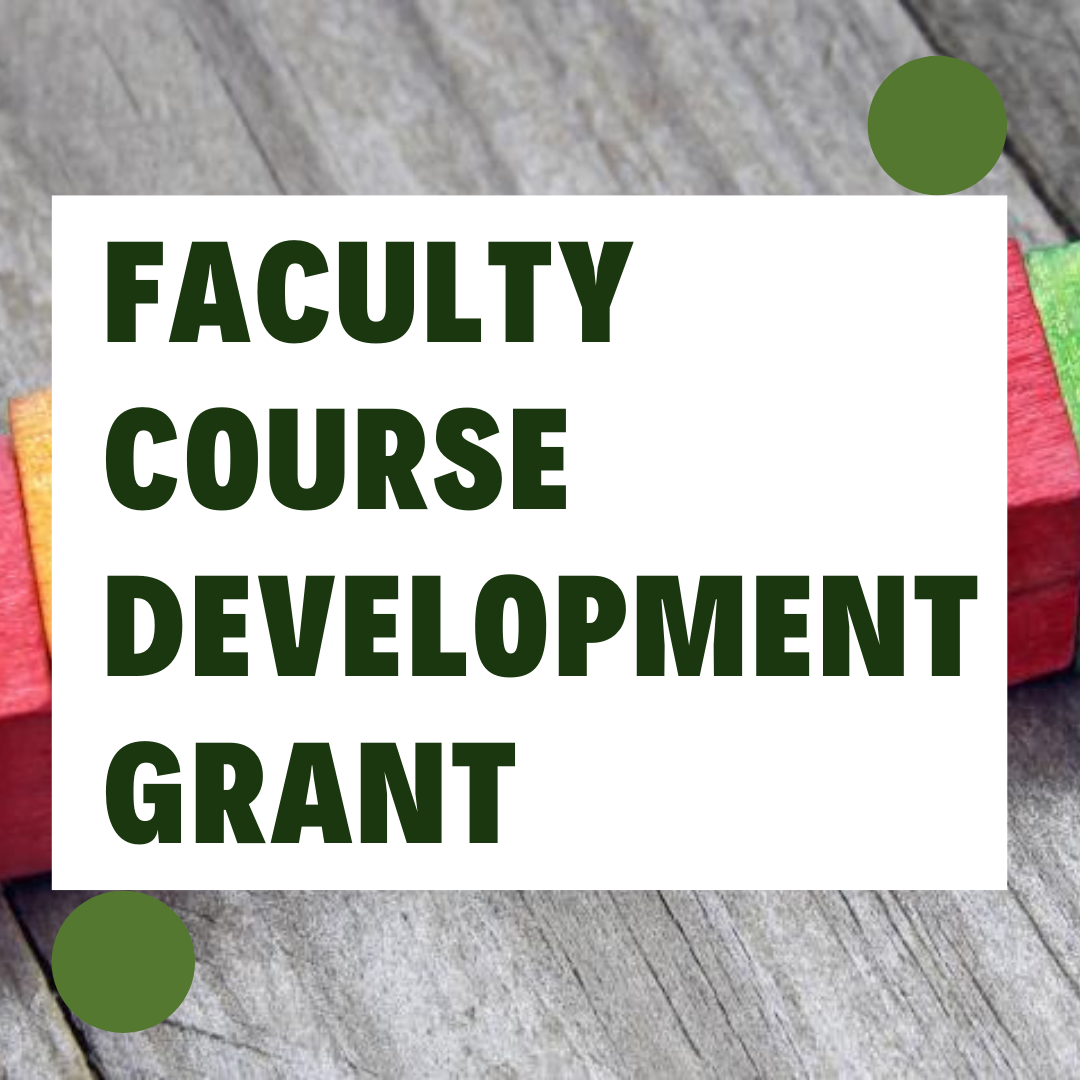 faculty course development grant