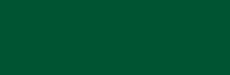Evergreen Color Block